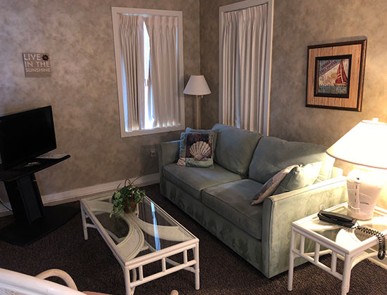 1 Bedroom Apartment - Lower